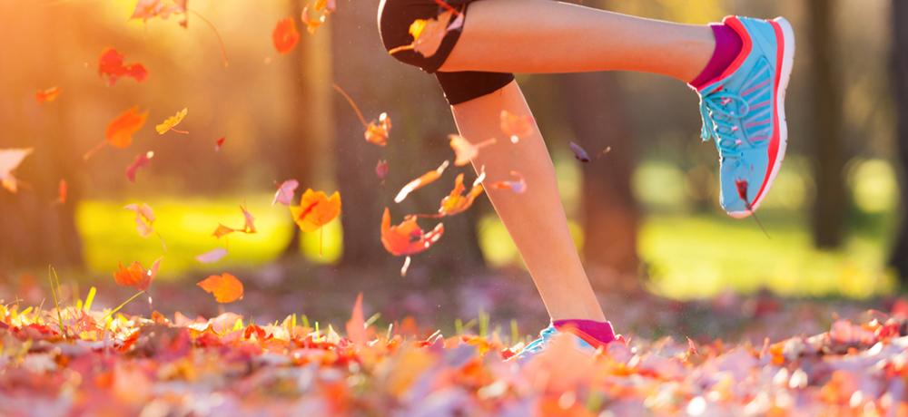 Frischer Wind im Herbst – mit Präsentationstrainings gegen den grauen Alltag